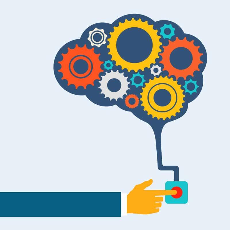 Awokado poprawia pracę mózgu