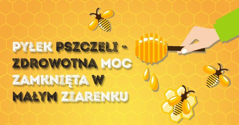 Pyłek pszczeli właściwości i zastosowanie